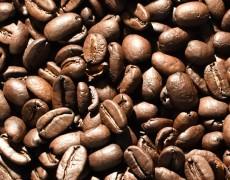 Semana Internacional do Café 2020